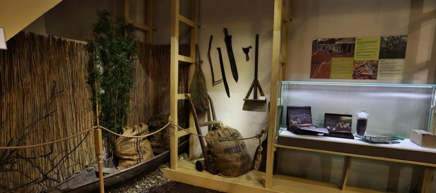 Выставка в Музее шоколада