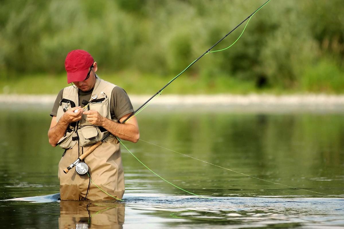 игра рыболов видео
