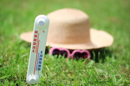 Аномальная жара в Чехии бьет все рекорды