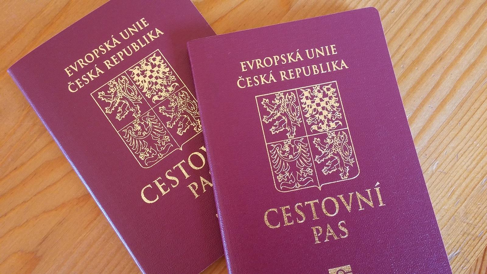пара паспортов