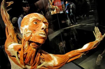 Выставка трупов в Праге 2012