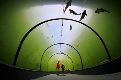 Туристы в Чехии смогут побывать в уникальном тоннеле